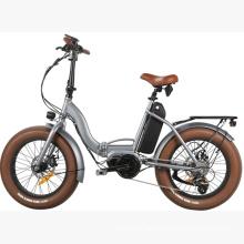 48V Big Power Folding Electric Bicycle E Bike/ 20inch Fat Tire Electric Bike