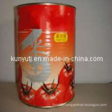 Canned Tomato Paste with High Quality