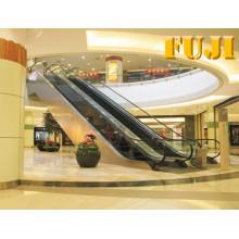 Escalier d'intérieur avec largeur d'échelle de 35 degrés 1000 mm
