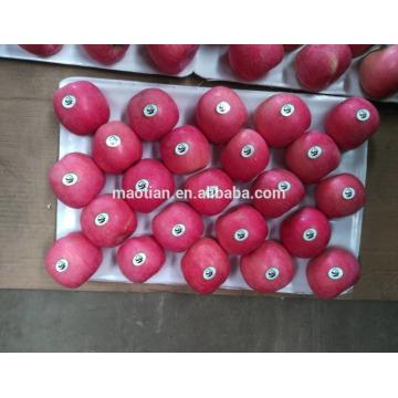 Fruit de pomme frais à vendre
