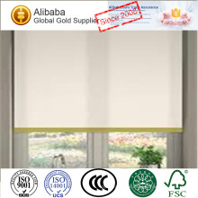 Hot-Selling with Exceptional Quality of Personalized Electric Window Roller Shades