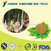 Gingerols/Anti Gastric Ulcer/Herbal Extract Ginger Root Extract