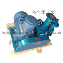 Sumpf-Gas-Kompressor Methan-Kompressor Biogas-Kompressor (TDS-Serie)