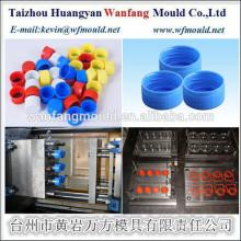 HDPE Material and Screw Cap custom plastic cap mould