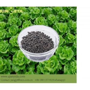 Greenhouse lettuce use biochar organic fertilizer