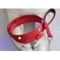 LED Flashing Pet Lead/Leash/Pet Strap