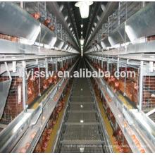 Plan de Negocios de Granjas Avícolas en Lengua Marathi