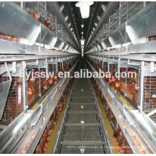 Plano de Negócios da Avicultura na Marathi