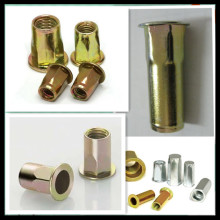 Flat Head Hex Rivet Nut