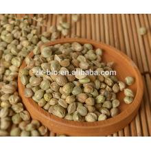 Venda quente sementes de cânhamo orgânico