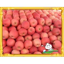 Красный свежий fuji яблоко низкой цене / Китайский красный fuji apple / Свежий красный сладкий apple