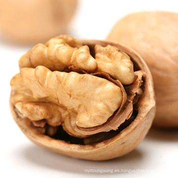 Nueces chinas en granos de cáscara / nueces a granel