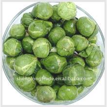 Importação de vegetais repolho 13cm