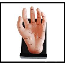 Massage-Hand-Modell (M-7-12) Akupunktur