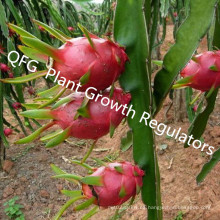 Reguladores de Crecimiento Vegetal / Precios de Hormonas Vegetales