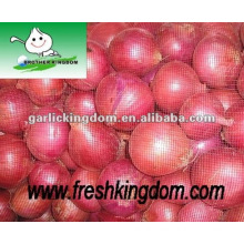 Fresh Red and Yellow Onion,New Crop Onion