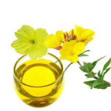 Factory Wholesale Spikenard Oil Jatamansi Oil