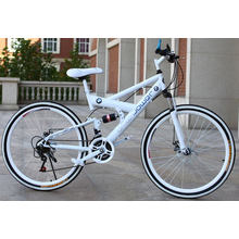 Hot Sale 26 Inch 21 Speed Mountain Bicycle with Best Price