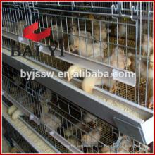Tipo H, capacidad para 400 pájaros, criadero de pollos, jaula