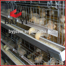 H type, 400 Birds Capacity Chicken Breeder Cage