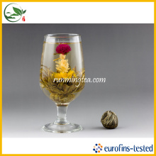 Qing Tou Yi Ele Affection Amaranth Amarelo Chá Floração
