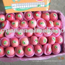 Manzanas seleccionadas