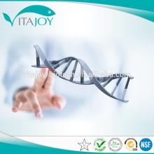 Gute Qualität hochreine nootropics Piracetam 98% CAS: 7491-74-9
