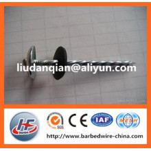 """top quality 1/2""""-10"""" roofing umbrella nail with best prices"""