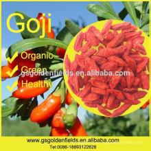 2017 nueva cosecha orgánica Goji Berry