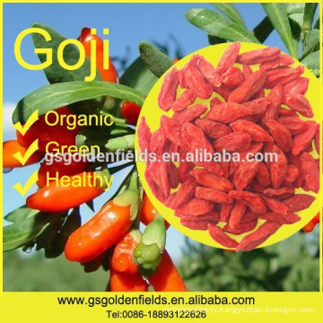 2017 new crop Organic Goji Berry