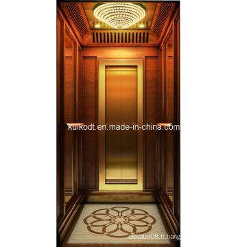 Ascenseur de villa avec acier inoxydable en acier Ti-Gold (KJX-BS03)