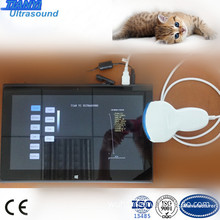 Light and Mobile Tablet Veterinary Ultrasound with USB Probe
