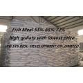 Farinha de peixe para alimentação de peixe Animal Feed Additive (proteína 55% 65% 72%)