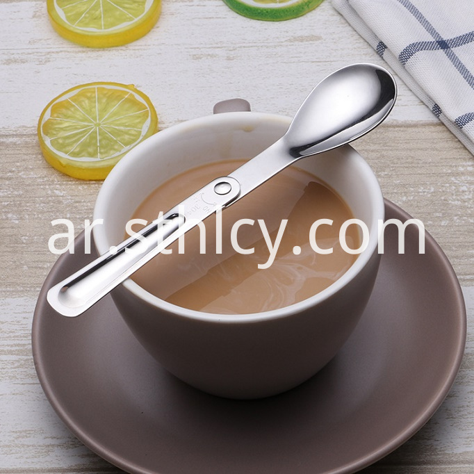 Stainless Steel Spoon