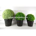 Simulation respectueuse de l'environnement artificielle balle bonsaï décor