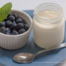 Yogur natural sano y probiótico con cultivos vivos