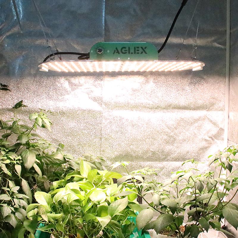 grow lights for vegetables