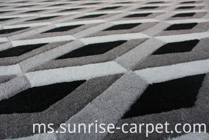 Carved Carpet with Geometry Design