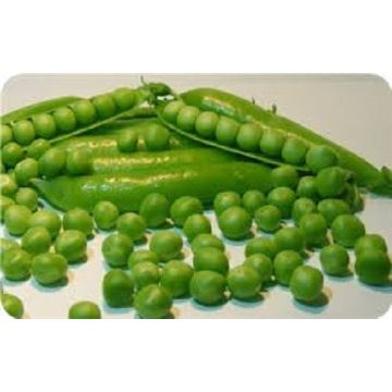 Nutritional Value Of Grean peas