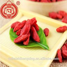 China Bulk Goji Berries Dried Fruit Ningxia Goji