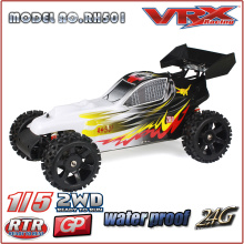 Venda quente de 2016 2WD Nitro Buggy, fábrica totalmente montado carro de brinquedo do rc RTR da China