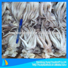 all size frozen new fishing squid head