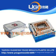 Zhejiang taizhou huangyan molde de recipiente de caneta e 2013 nova caixa de ferramentas de injeção de plástico doméstico mouldyougo molde