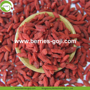 Hot Sale Factory Supply Torkad Zhongning Goji Berry