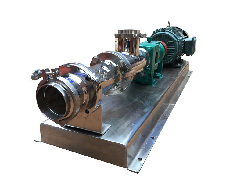 GF stainless steel sanitary grade single screw pump 2