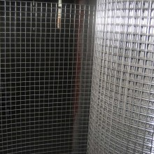 Galvanized Welded Bird Cage Wire