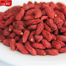 New fresh wholesale goji 100