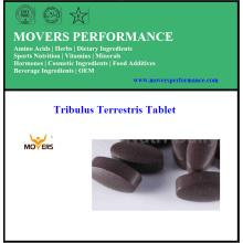 Tableta de Tribulus Terrestris caliente puro de calidad superior