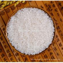 meilleure qualité court riz rond de riz de sushi à vendre