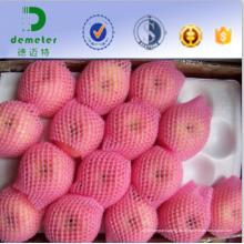 Las muestras gratuitas aceptables del OEM ofrecieron la red de la espuma del empaquetado de Apple para el uso de la industria de la fruta fresca
